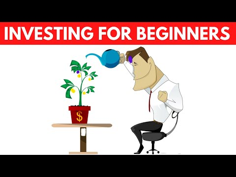 How a Beginner should Start Investing – Investing 101 – How To Invest